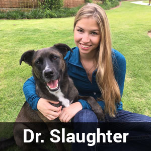 Dr._Slaughter