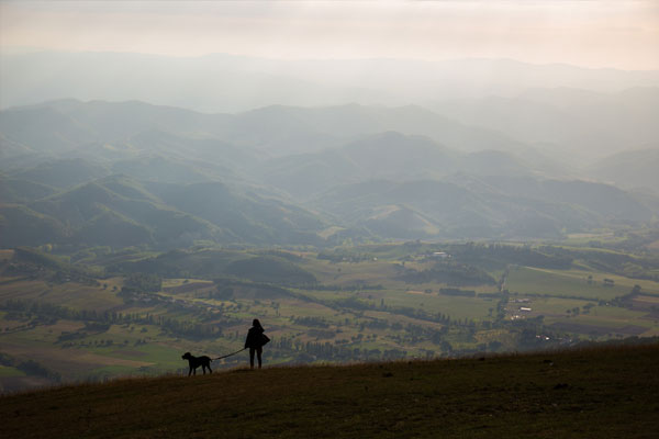 lady with dog standing on hill