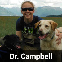 Dr._Campbell