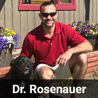 Dr._Rosenauer