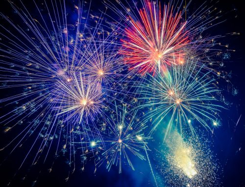 Red, White, and Boom! — 7 Pet Safety Tips for July Fourth